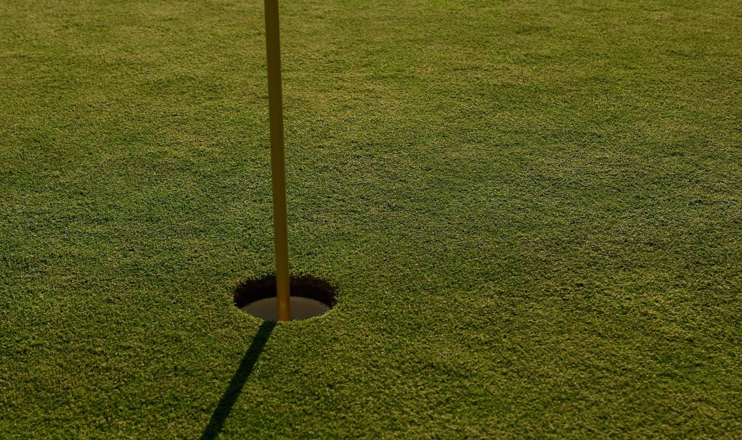 Golf App- GolfLogix