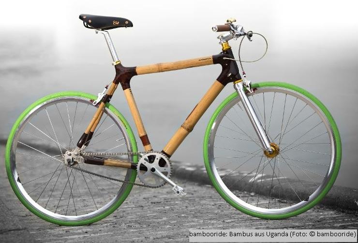 bambus, fahrrad, elektro fahrrad
