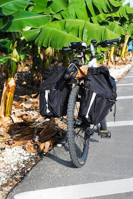 mountainbike mit radtaschen