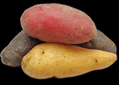 LiCipedia – Kartoffeln II