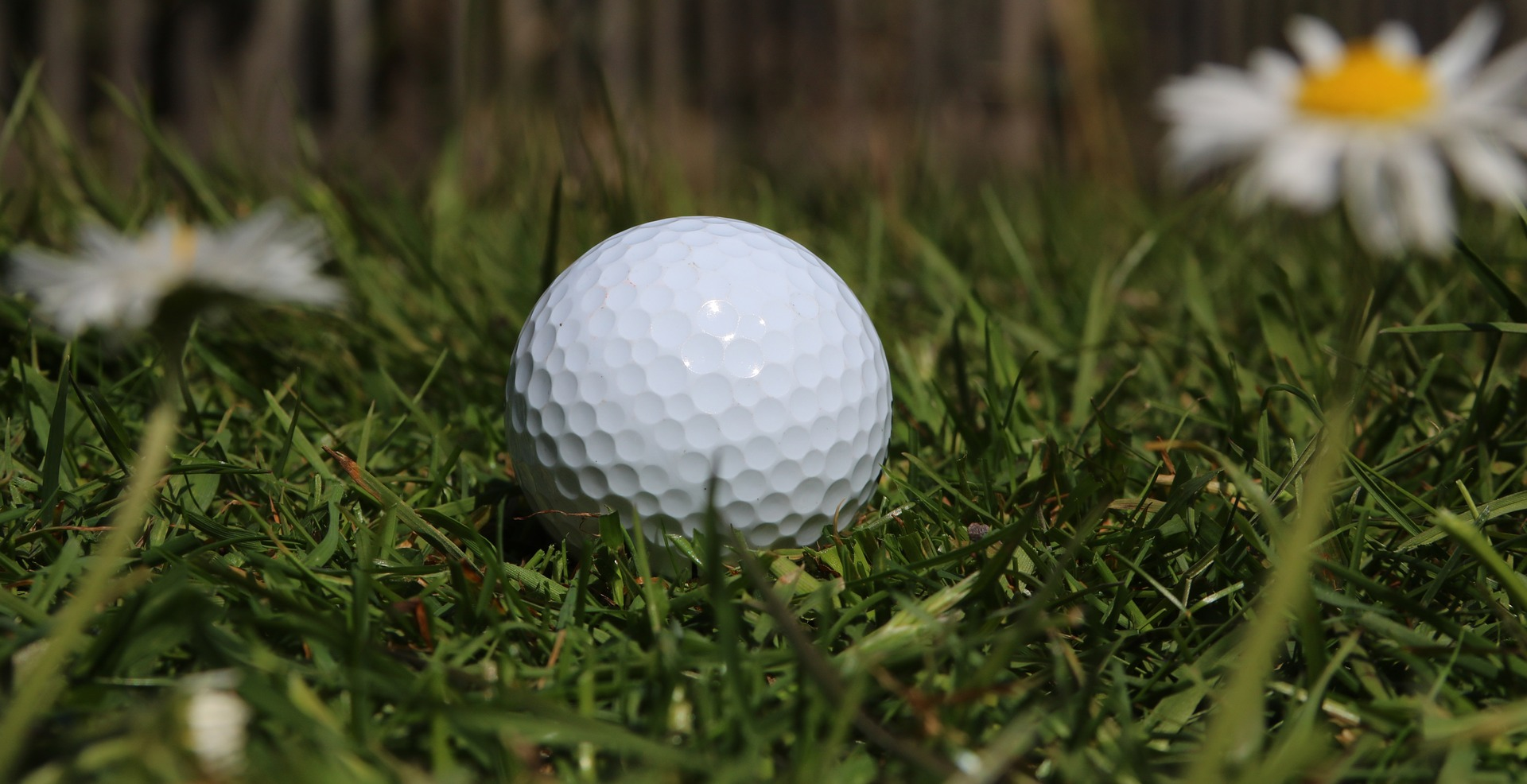 Golf Star App