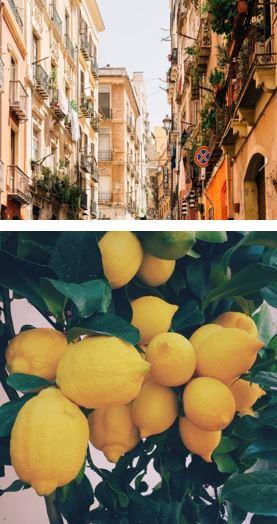 Lemonen