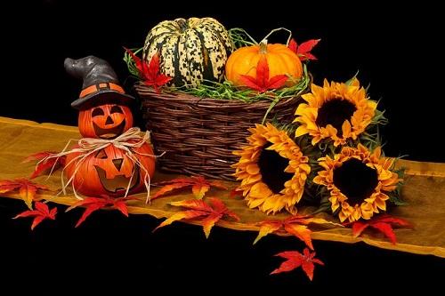 9 Gründe warum der Herbst die schönste Jahreszeit ist